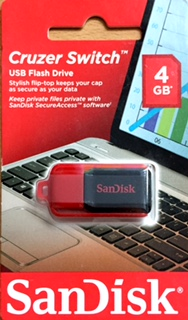 USB Flash Drive - 4GB x 1